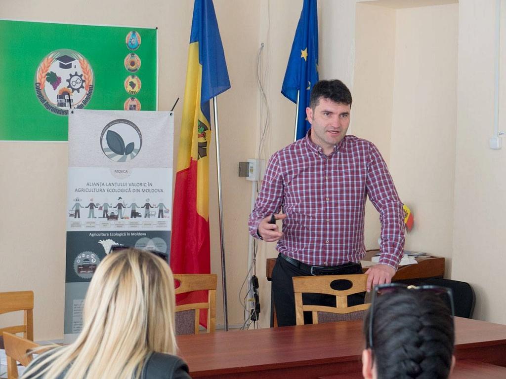Alexei Micu, компания Micu&Co