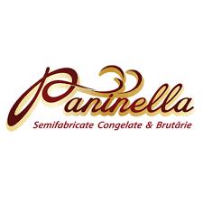 Константин Мамалига, компания Paninela SRL