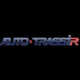 AutoTRASSIR-30 (4 канала до 30 км\ч)